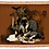 Thumbnail: Dark Wolf Printable