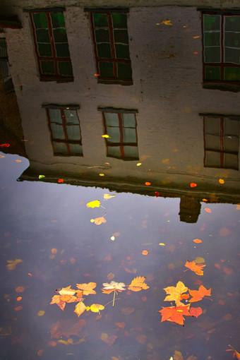 Bruges_1227.jpeg