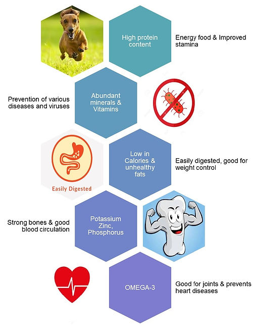 health benefits_edited.jpg