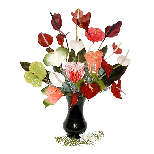 Assorted Colored Anthuriums
