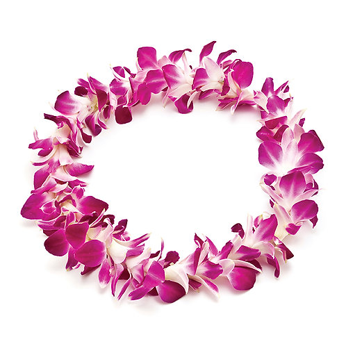 Single Dendrobium Orchid Leis