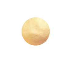 gold_globe_small_edited.png