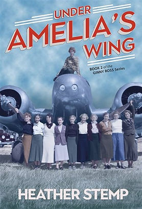 under amelia's wing book cover.jpg