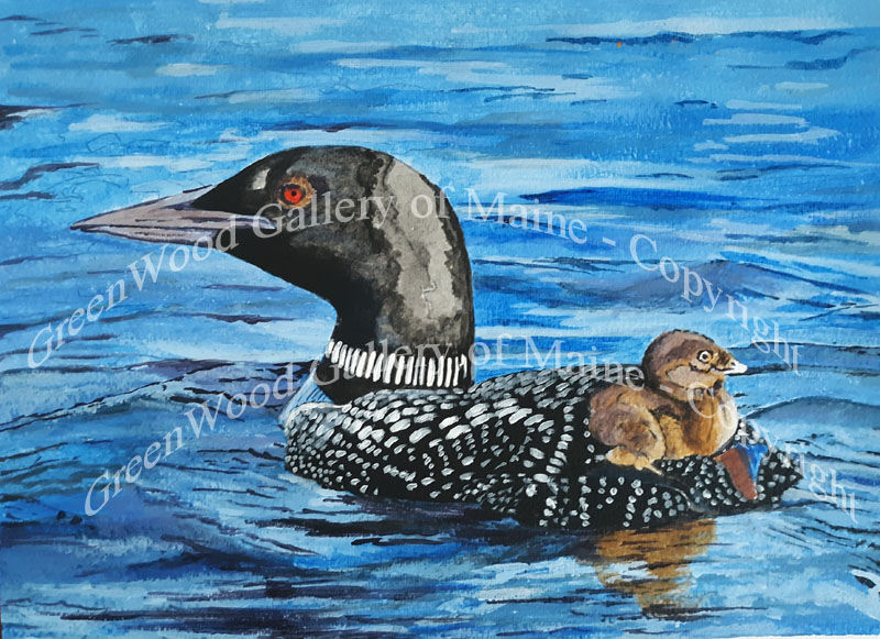 Loon and Her Baby
