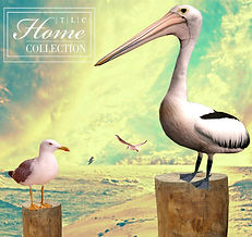 beach24x22_with birds.jpg
