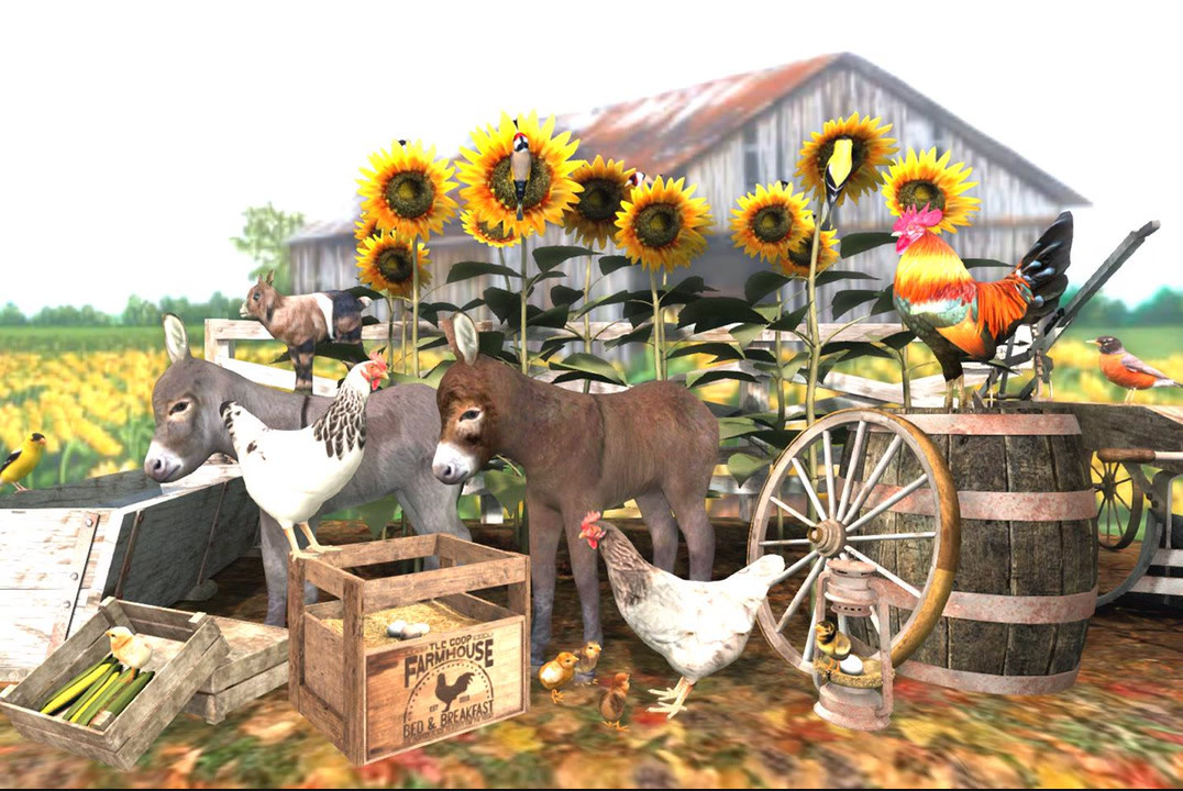 Farm & backyard animals