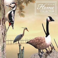 TLC Home Collection Logo.jpg
