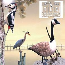 goose24x22_with birds_edited.jpg