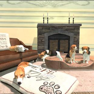 Indoor animals sets