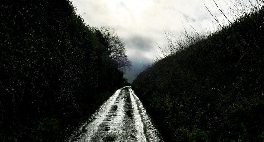 Lane.sm(3).jpg