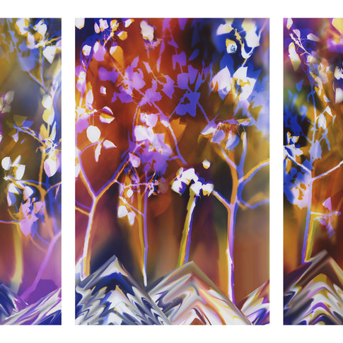 T113 Pando 60x38 3-60x114 panels 2015.jpg