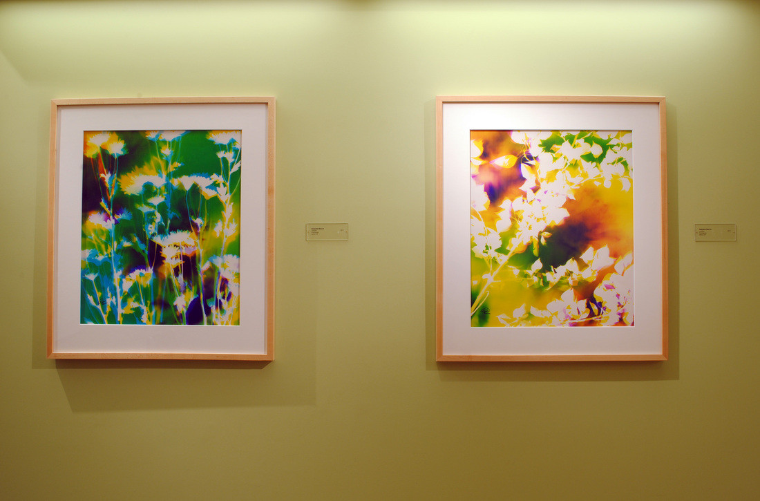 Installed at Kaiser Permanente, Fairfield, CA