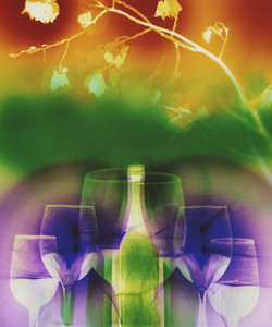 W58 Telluride Wine Festival 24x20 2014