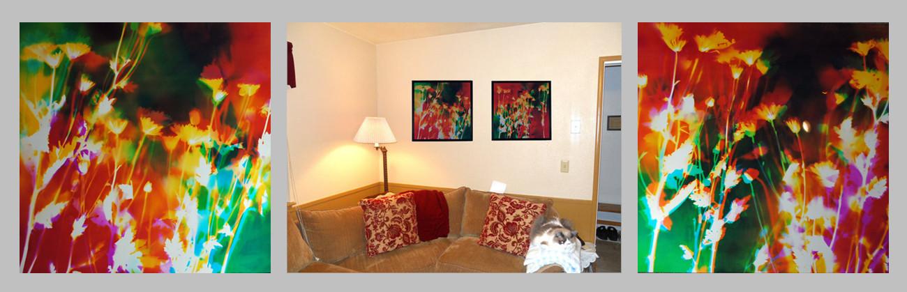 "20"" x 20"" each, Living Room, Turlock, CA"
