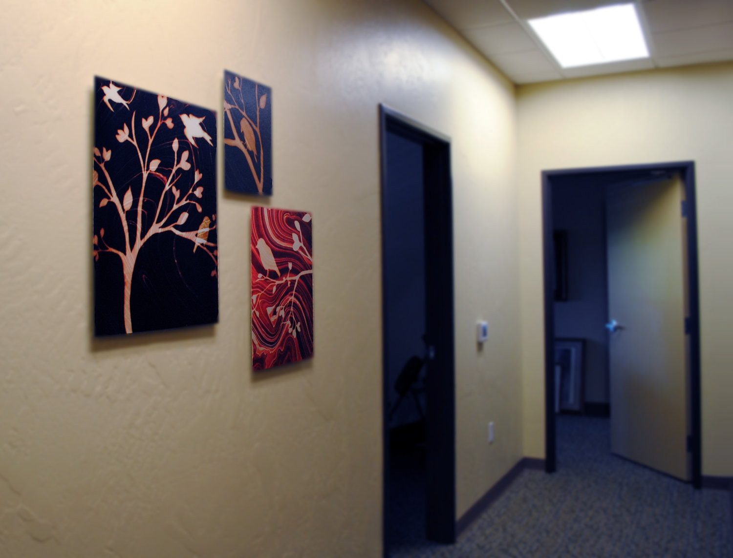 3 aluminum prints, Installed at Bend Headache Center, Bend, OR