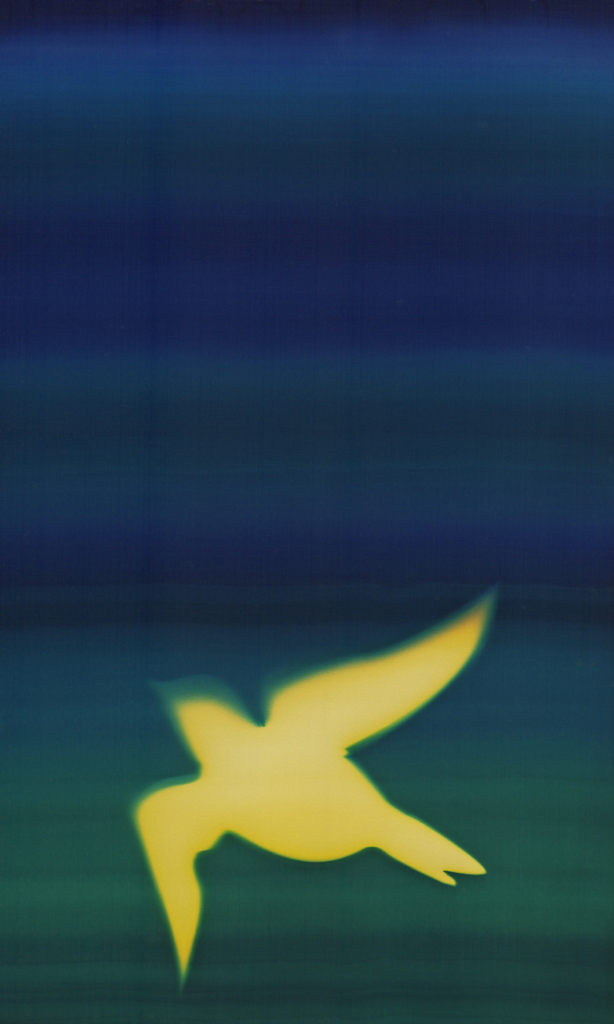 B3 Bird 2 Birds photo art Natasha Bacca yellow blue green