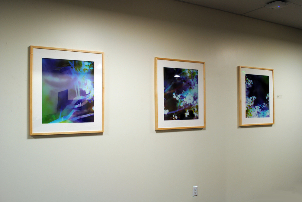 Installed at Kaiser Permanente, San Ramon, CA