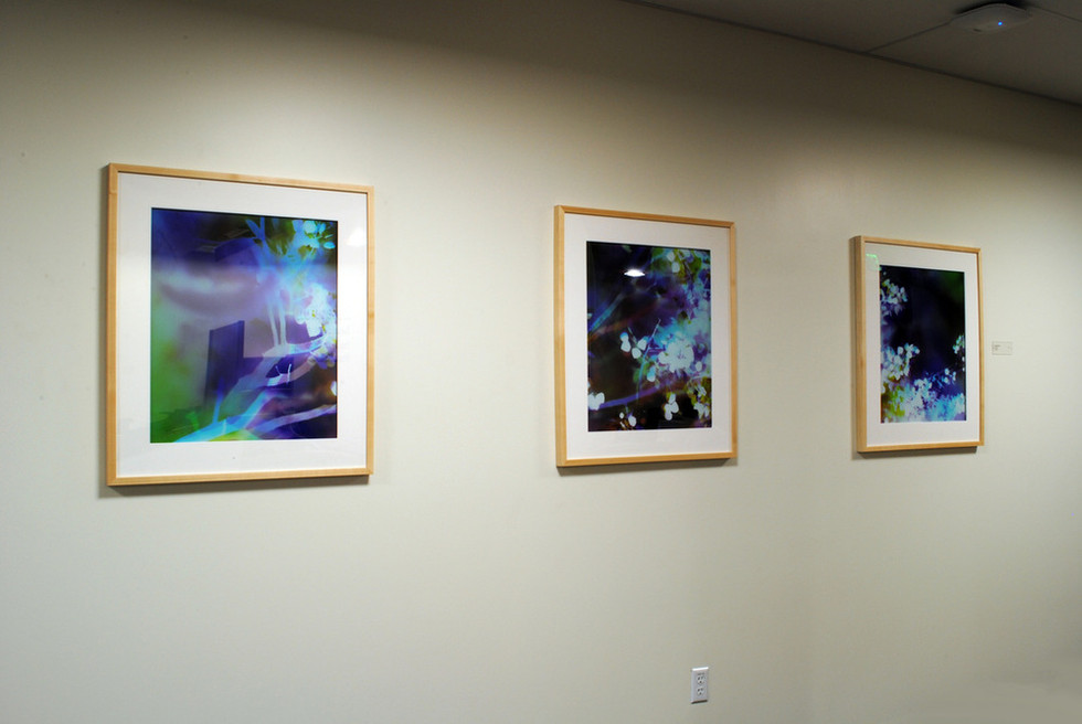 Installed at Kaiser Permanente, San Ramon, CA