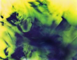 LP1 11x14 2010