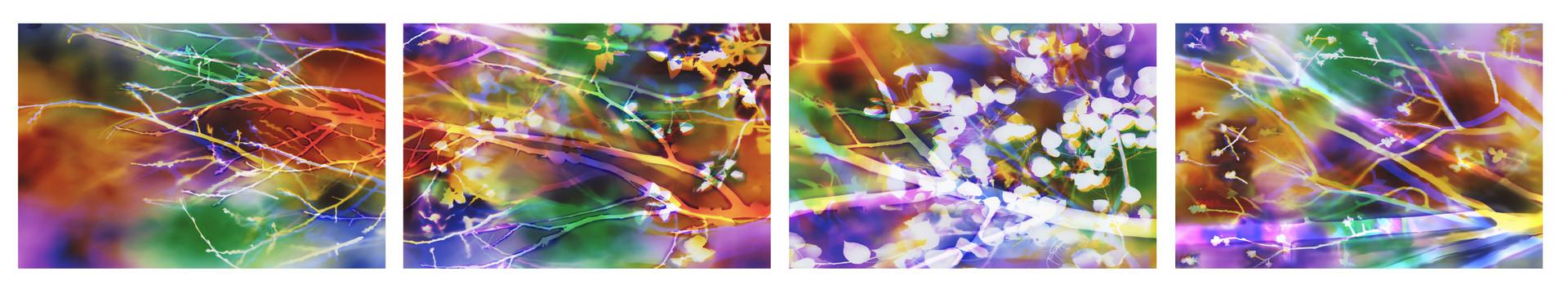 "Inspired by Nature: Seasons, 40"" x 240"" (4 40"" x 60"" panels), Commission by Utah Public Art Program, Installed in Noorda School of Dentistry at University of Utah, Salt Lake City, UT"