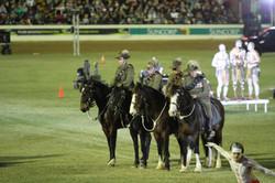 Walers in Lighthorse EKKA Nites 2015