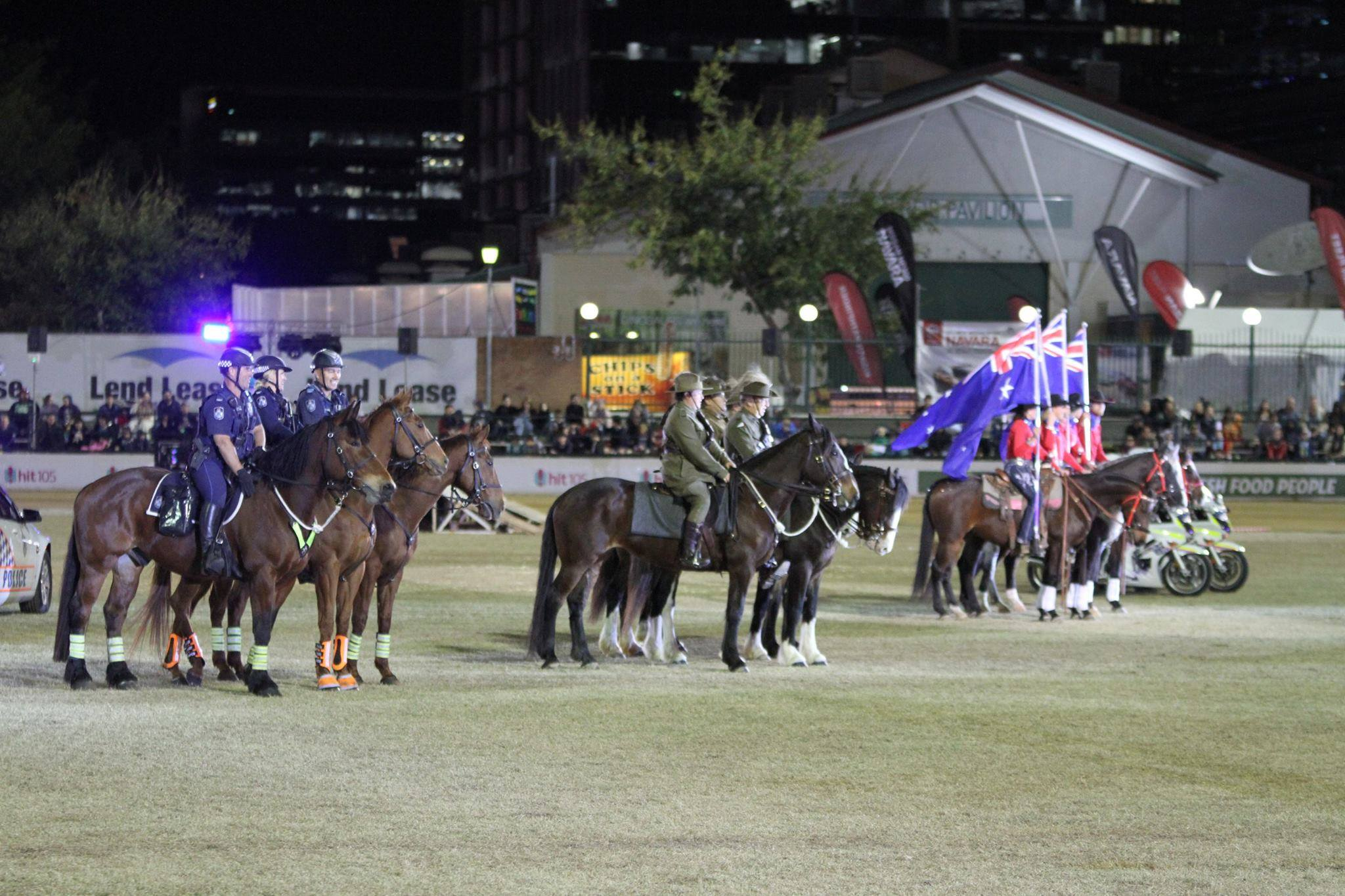 Walers in Light Horse EKKA 2015