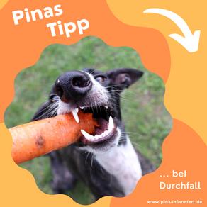 Pinas Tipp ... bei Durchfall