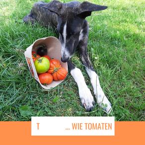 T     ... wie Tomaten