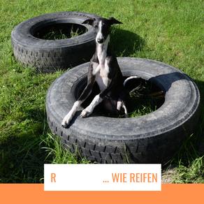 R     ... wie Reifen