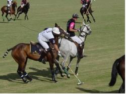 deportes humedadl17_387_289_90