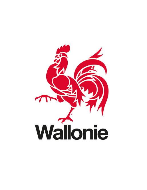 wallonie_v.jpg