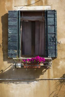 Picturesque Window