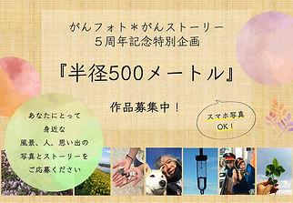chirashi_hankei-500m.jpg