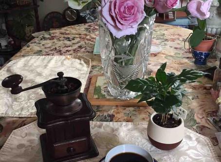 コーヒーの時間