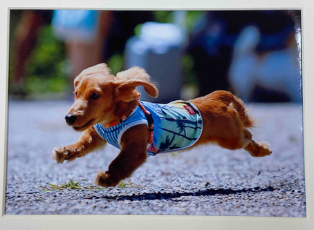 Run for tomorrow!! ~明日に向かって走れ~
