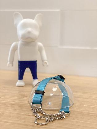 Martingale Collar - Turquoise
