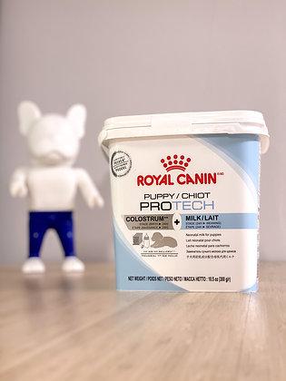 Protech Colostrum + Baby Dog Milk