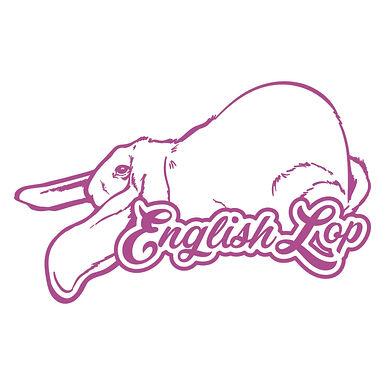 Dreamy - English Lop Decal