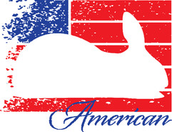 (American Rabbit) Patriotic Design.jpg