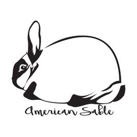 (Ugly Rabbit) American Sable Outline.jpg