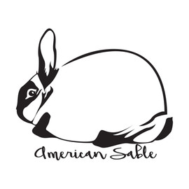 (Ugly Rabbit) American Sable Outline.jpg