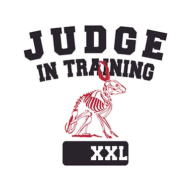 Judge In Training Tee