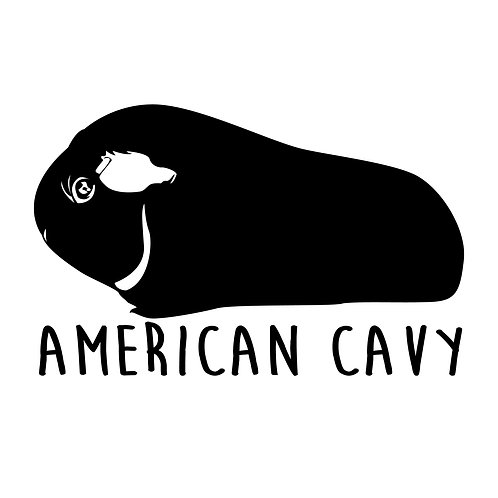 American Cavy Tee