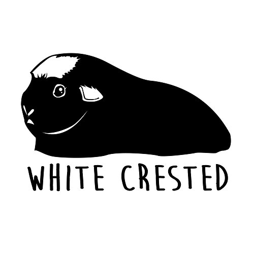 White Crested Cavy Tee