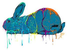 American Rabbit Drip - Drawing 1.jpg