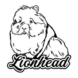 (Ugly Rabbit) Dreamy - Lionhead Black.jp
