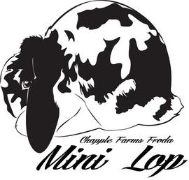 Mini Lop Rasta.jpg