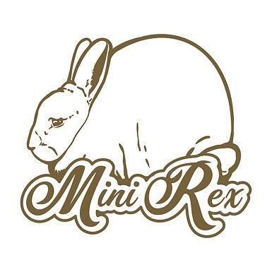 Mini Rex - Dreamy Decal