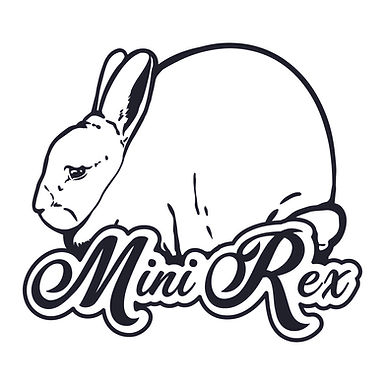 Mini Rex (Dreamy) Digital File