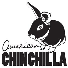 (URA) American Chinchilla Outline Printe